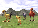 Final Fantasy XI: Chocobos Screenshot