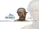 Final Fantasy XI: Elvaan Male Wallpaper Thumbnail